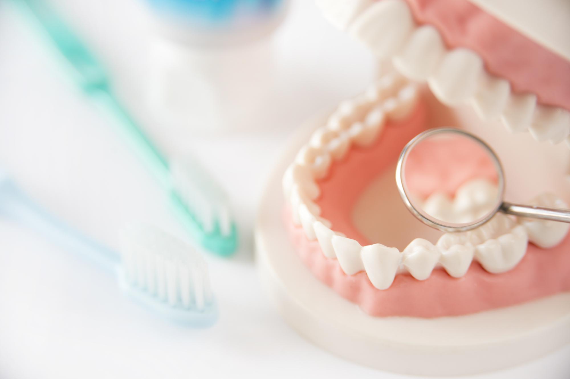 入れ歯を長持ちさせるために